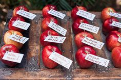 DIY wedding escort cards with apples - photo by April Maura Photography http://ruffledblog.com/earthy-bohemian-wedding-inspiration