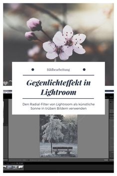 Lightroom, Art, Pictures, Light Photography, Image Editing, Sun, Art Background, Kunst, Performing Arts