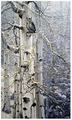 Snowy White Birch Tree and Owl by Stephen Lymen