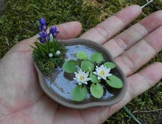 , Pim& Mini Plants: How I make miniature Water Lily and Lotus. , Pim& Mini Plants: How I make miniature Water Lily and Lotus Mini Fairy Garden, Fairy Garden Houses, Gnome Garden, Fairy Gardening, Clay Fairy House, Fairy Garden Plants, Garden Ponds, Fairies Garden, Fruit Garden