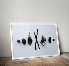 Nature's tiny wonders - Black lovely small things - Earth day special  (original digital photography download)