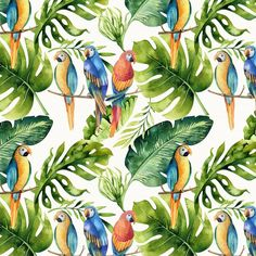 Möbelfolie Kvilis - Papageien im Dschungel | wall-art.de Wall Art, Painting, Animals, Products, Madness, Colorful Parrots, Jungles, Wall Papers, Beams
