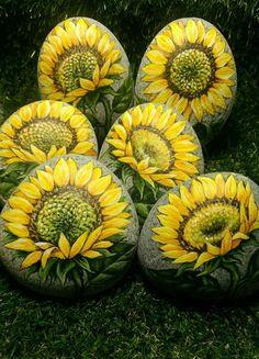 Sunflower painted rocks.