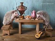 Photograph the tea party by Elena Eremina on 500px