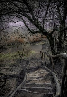 Stairs to Christiania - Copenhagen - by Franke Gormadoc