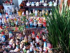A Sydney, Australia suburban home has hundreds of gnomes in lined up in the yard.