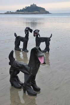 Rubber Boots Dogs 5