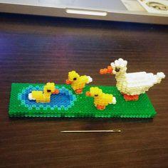 Duckies - Pond perler beads by doheeyang
