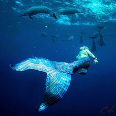 Ocean Ramsey is a real life mermaid. Photo: Clark Little Mermaid Man, Mermaid Cove, Real Life Mermaids, Mermaids And Mermen, Mythical Creatures, Sea Creatures, Clark Little Photography, Realistic Mermaid Tails, Professional Mermaid