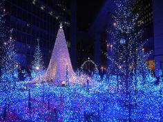 Christmas lights near shiodome