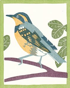 "Varied Thrush linoleum cut greeting card, 5 colors, 4"" X 5"""
