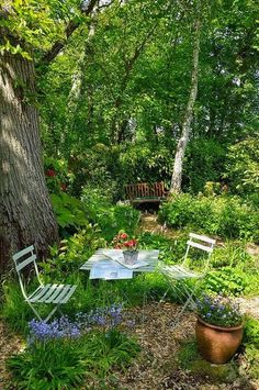 Ready For Tea – in a woodland garden - Gartengestaltung ideen Garden Cottage, Home And Garden, Garden Living, Sussex Gardens, The Secret Garden, Secret Gardens, Modern Garden Design, Modern Design, Woodland Garden