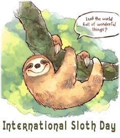 Sloth Day was October 20, but we're a little slow!