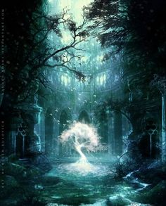 Forest of Death and the Tree of Life Fantasy Magic, Fantasy World, Fantasy Trees, Dark Fantasy, Beautiful Places, Beautiful Pictures, Heaven Pictures, Fantasy Places, Fantasy Kunst