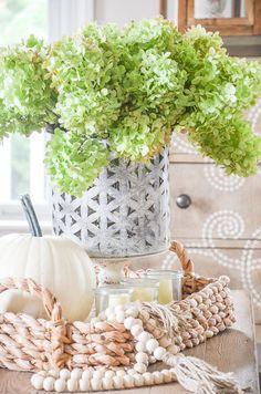 fall vignette on a coffee table with green hydrangeas and pumpkins Faux Pumpkins, Velvet Pumpkins, White Pumpkins, Autumn Nature, Autumn Home, Thanksgiving Decorations, Seasonal Decor, Green Pumpkin, Pumpkin Spice