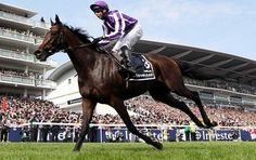 Royal Ascot 2013 Tickets Promotion Discount Codes