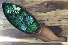 Just made this by myself and really proud :) #plants #diy #cute #pinterest #green