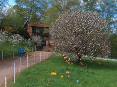My Funny: Volker Kraft's Easter Tree Decorated by 9500 Eggs   Pictures