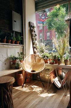 Ideal urban living : in an OLD space (not new!!!) with vintage remains to which you van eclectically add your own taste.  The plants and light in this space make it über-inviting. Yum.