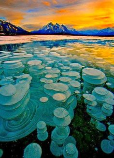 Frozen Bubbles, Abraham Lake, Alberta, Canada Bubbles trapped and frozen under a thick layer of ice creating a glass type feel to the frozen lake.