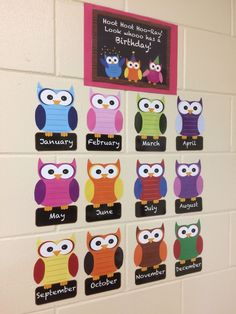 Owl Birthday Board, Bright Colored Owl Theme, Months of the Year, Elementary Classroom Decorations, Birthday Chart Classroom, Birthday Bulletin Boards, Owl Theme Classroom, Birthday Charts, Preschool Birthday Board, Classroom Posters, Owl Bulletin Boards, Kindergarten Classroom Decor, School Decorations