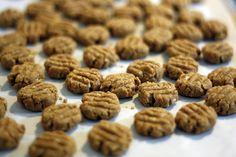 8 DIY Dog Treats You Can Make in 15 Minutes   DogVacay Official Blog