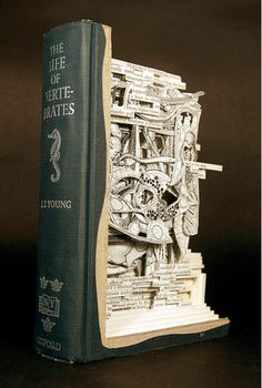 wow! book art
