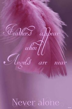 Feather appear when Angels are near. Never Alone.have alot of angels around me. Angel Protector, I Believe In Angels, My Guardian Angel, Never Alone, Angel Pictures, Angels Among Us, Angels In Heaven, Angel Art, In Loving Memory