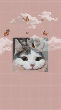 Iphone Wallpaper Cat, Simple Iphone Wallpaper, Cute Emoji Wallpaper, Iphone Wallpaper Tumblr Aesthetic, Bear Wallpaper, Aesthetic Pastel Wallpaper, Animal Wallpaper, Cute Cartoon Wallpapers, Pretty Wallpapers