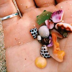 Pretty lil #seashells <3