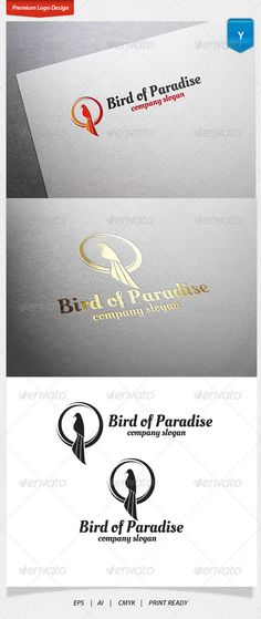 Bird Of Paradise — Vector EPS #animal #condor • Available here → https://graphicriver.net/item/bird-of-paradise/4680635?ref=pxcr