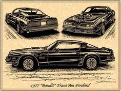 Pontiac Trans Am 1977, Pontiac Cars, Pontiac Firebird Trans Am, Chevrolet Camaro, Corvette, My Dream Car, Dream Cars, Cool Car Pictures, Car Pics