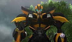 Bumblebee - Transformer: Prime Wiki