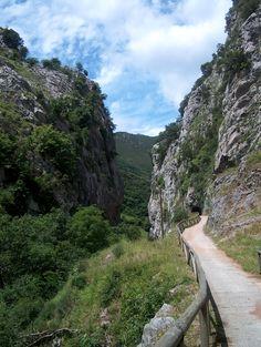Ruta de senderismo Senda del Oso, Asturias  http://www.ayuda-domicilio-gijon.com/es/