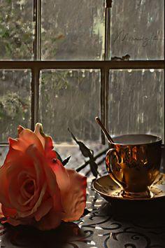 Cozy Rainy Day, Rainy Days, Gif Chuva, Very Nice Gif, Good Morning Gif Images, Gif Lindos, Rain Gif, Good Night Prayer, Foto Gif