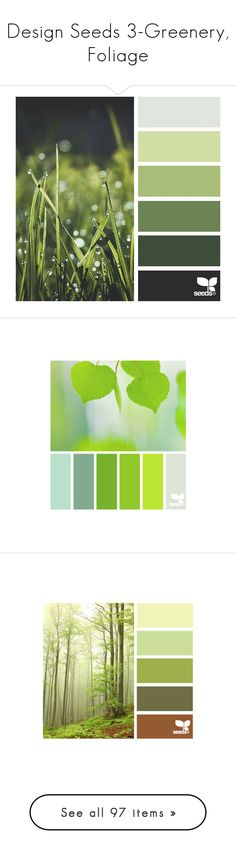 """""""Design Seeds 3-Greenery, Foliage"""" by franceseattle ❤ liked on Polyvore featuring backgrounds, colors, design seeds, filler, green, phrase, quotes, saying, text and color palettes"""