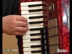 Nauka gry na akordeonie od podstaw - YouTube Piano, Music Instruments, Youtube, Musical Instruments, Pianos, Youtubers, Youtube Movies