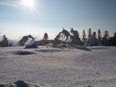 Wintertag auf der Hornisgrinde