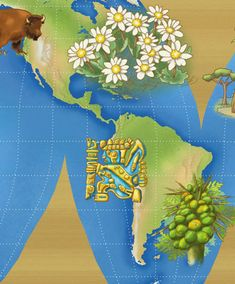 Healing Herbs Around Central and South America