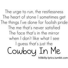 Tim McGraw - Cowboy In Me