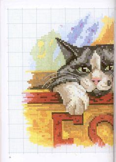 Gallery.ru / Фото #48 - Francien van Westering - Katten borduren met francien - anfisa1