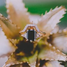 Green Wedding Shoes shares her take on this seasons trend of unconventional engagement rings - set against the tropical accents of a golden pineapple. What do you think? Unconventional Engagement Rings, Gold Wedding Rings, Wedding Bells, Wedding Shoot, Boho Wedding, Dream Wedding, Wedding Ideas, Green Wedding Shoes, Best Day Ever