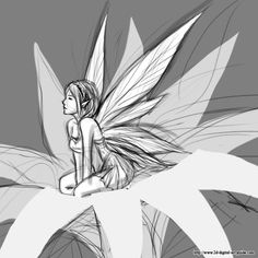 pics of drawings of fairies | Guide to Creating Fairy Drawings: Learn How to Draw Fairies in this ...