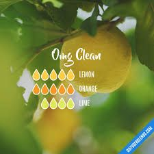 Image result for clean essential oils diffuser blend
