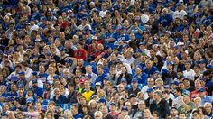 Baseball fans are calling for the Blue Jays to do more after Toronto spectators were heard shouting racial slurs at Tuesday's wild-card game against the Baltimore Orioles.