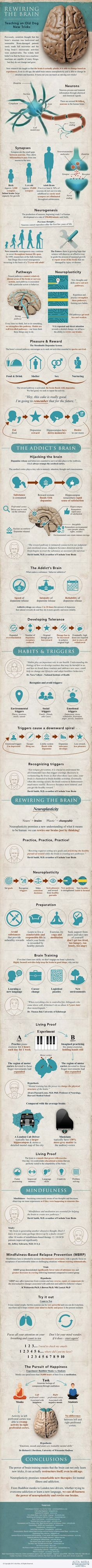 An Infographic To Tell You How Your Brain Works And How To Train It | This is a great infographic about how to break bad habits, create good habits, and even control our emotions -- Rewiring The Brain [Neuroscience News: http://futuristicnews.com/tag/brain/ Neuroscience Books: http://futuristicshop.com/category/neuroscience-books-neurotechnology-books/]