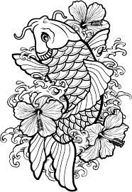 drawing koi fish connect to study of Japan and Japanese gardens