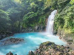 Jungles, volcans, mangroves, plages… Ce minuscule Etat a créé 61 parcs et réserves qui abritent 6% de la faune et de la flore mondiales.