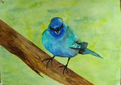 WATERCOLORS AND WORDS: BIRDS OF 2014 - INDIGO BUNTING
