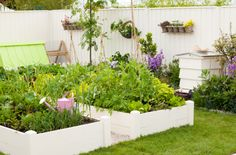 Free Garden DIY Projects | Starting an Organic Garden When You've Got Limited Space